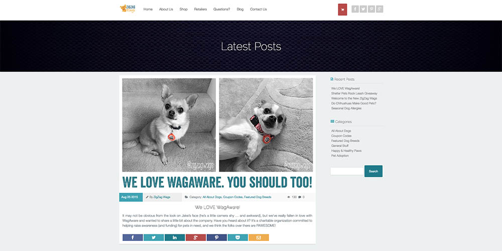 ZigZag Wags Blog Page